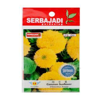 Harga Serbajadi Seeds SJ-FS011 Helanthus Annus (Common Sunflower)
