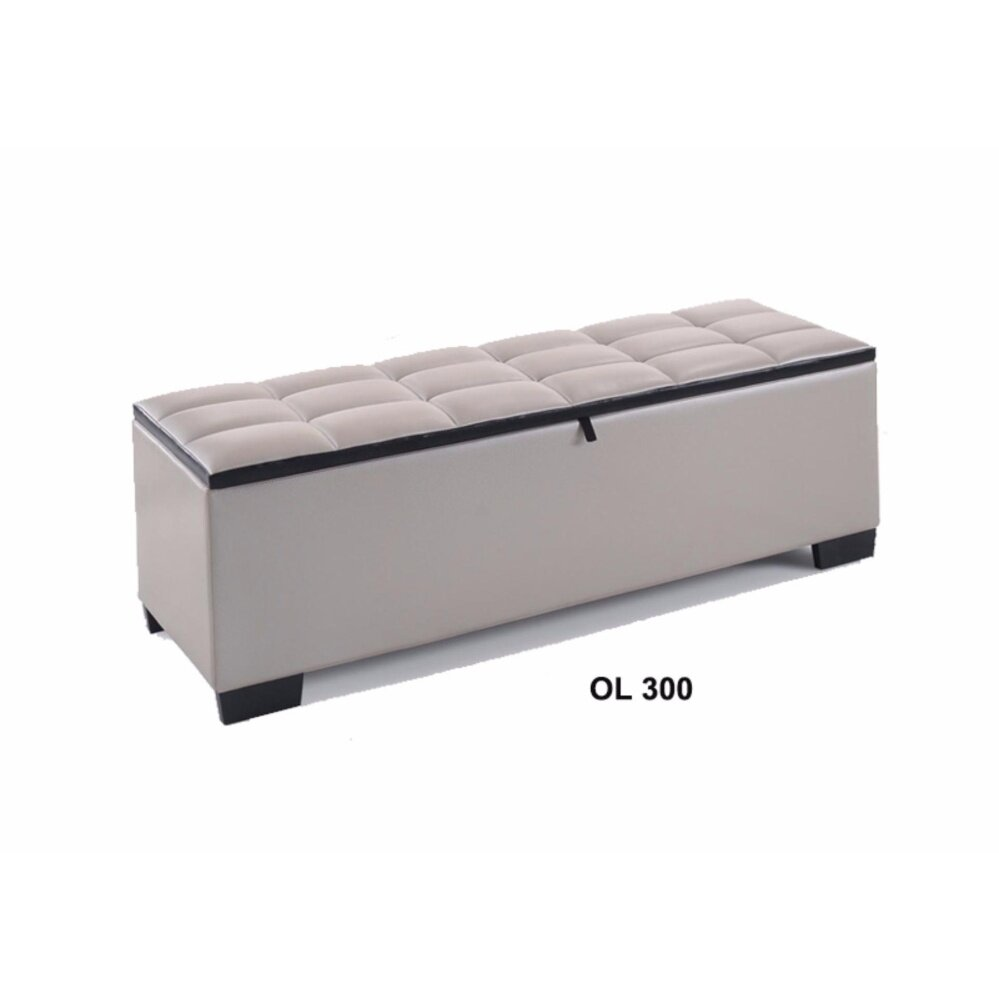 Sofa Sectional/ Storage Bench for Living Room/ Bedroom ...