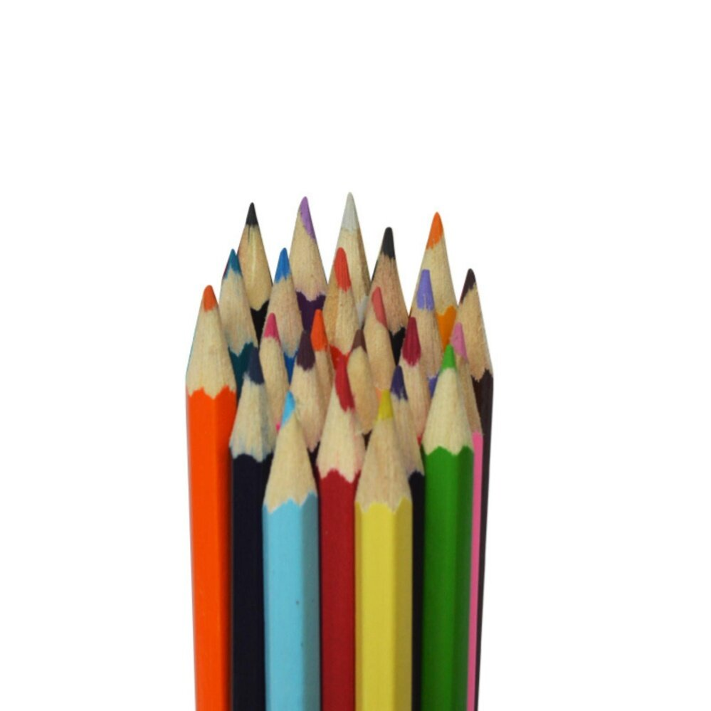 Student Graded 24 colors Pencils office