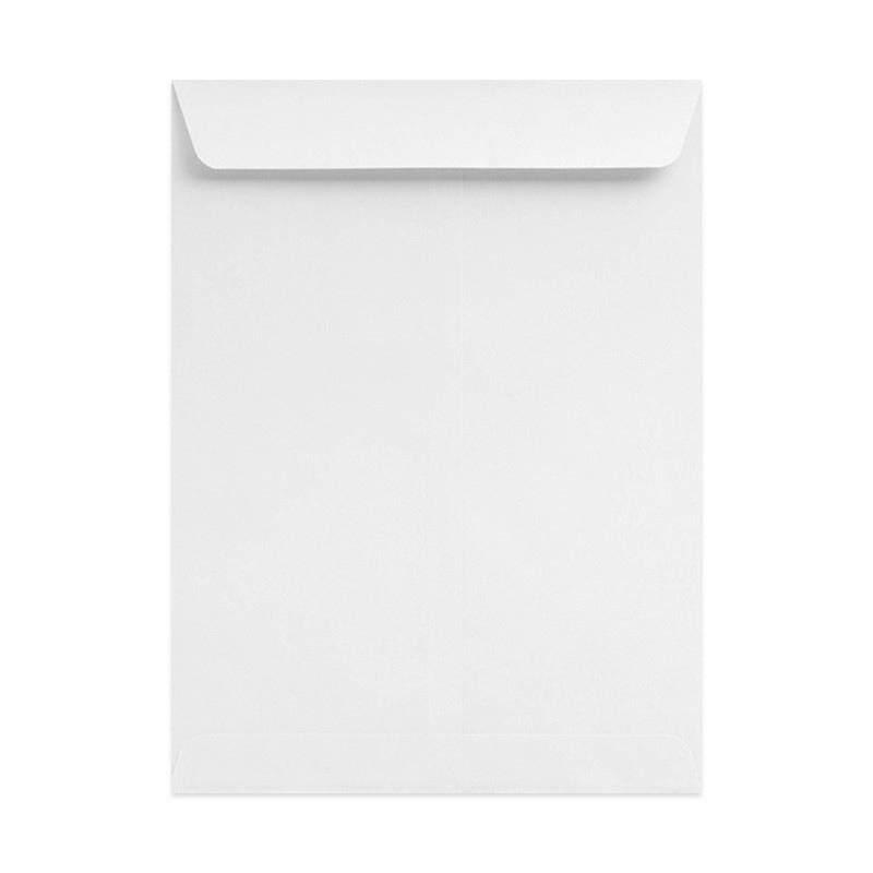 "White Envelope 10"" X 12"" 100GSM-250\'S"