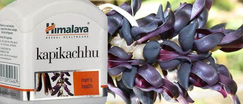 himalaya kapikachhu tablet-60s wellness