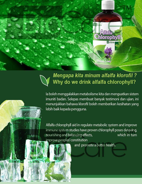 Biocare Alfalfa Chlorophyll Stevia 500ml FREE COCO MALT DRINKS 250g