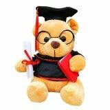 Maylee Cute Plush Graduation Bear Brown 16cm toys for girls