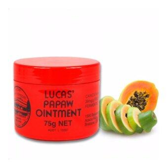 Harga Lucas Papaw Ointment Tube 75g [AUSTRALIA ORIGINAL IMPORTED PACK]Free Delivery