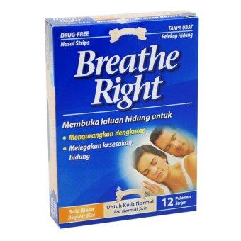 Harga Breathe Right Normal Skin 12S