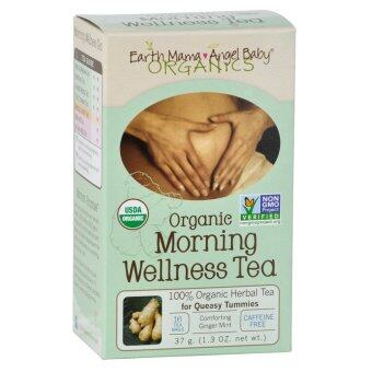 Harga Earth Mama Angel Baby Organic Morning Wellness Tea