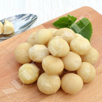 Harga Nutty Lover Premium Raw Macadamia Australia Nut (500 grams)