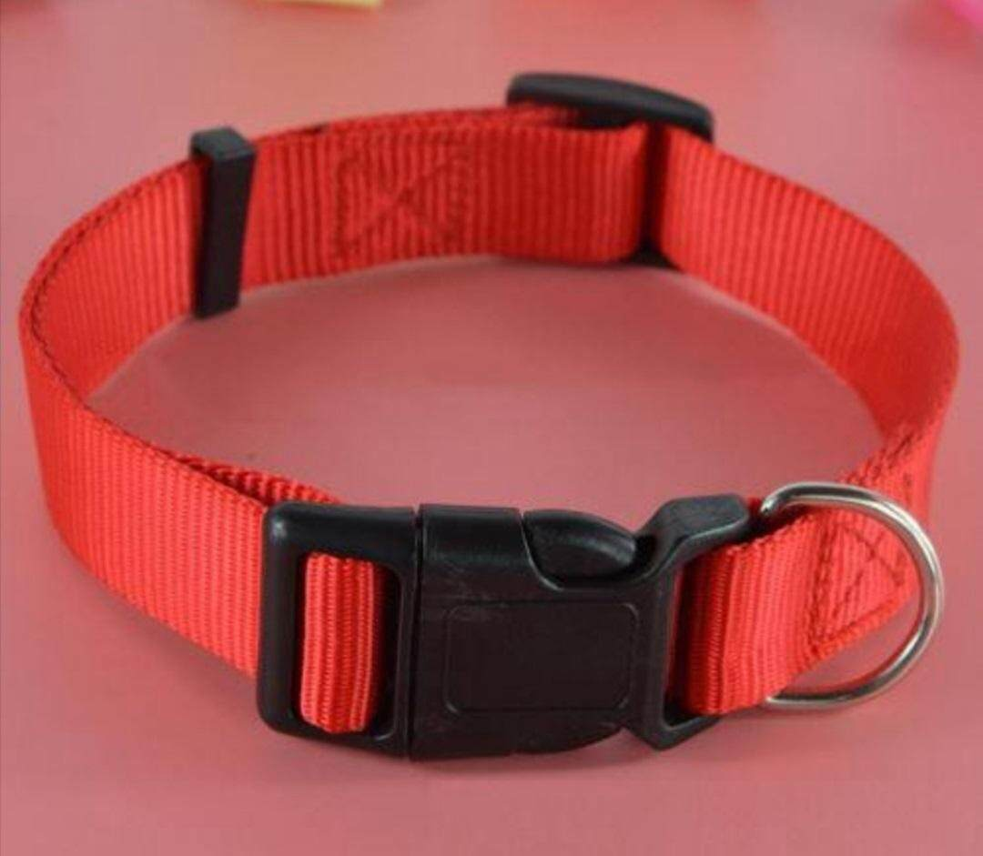 PET DOG COLLAR (SIZE L - ADJUSTABLE UP TO 56 cm)