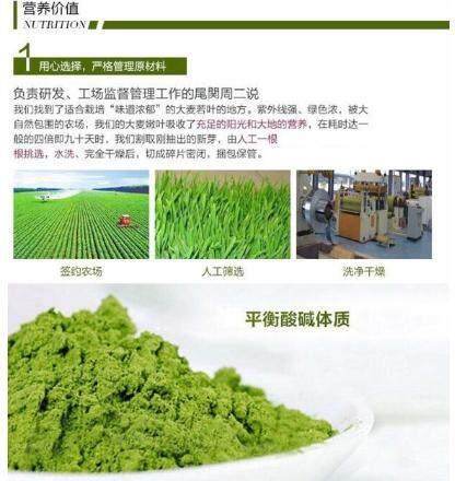 YAMAMOTO Aojiro Barley Grass Powder (44pack)
