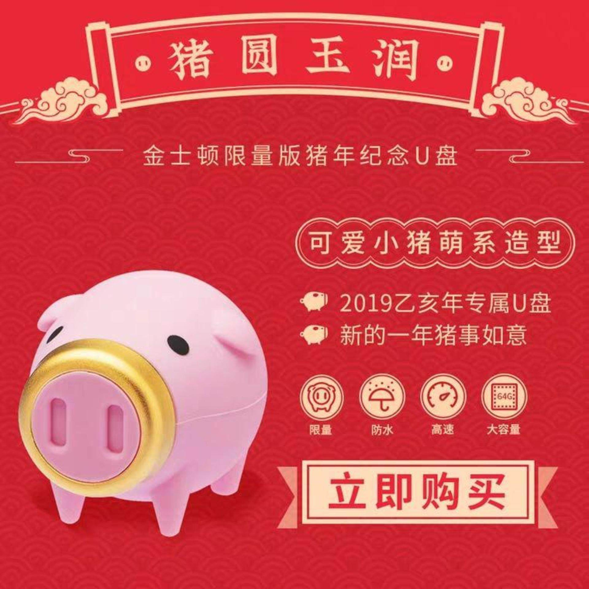 Kingston 2019 Chinese New Year of Pig 64GB USB 3.1 CNY Flash Drive/Pendrive (LIMITED EDITION) (Best CNY Gifts) READY STOCK