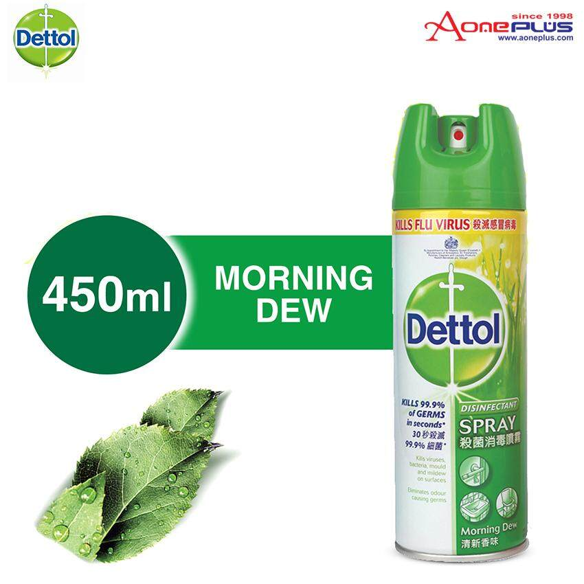 Dettol Antibacterial Germicidal Hygiene Liquid Disinfectant Spray Morning Dew 450ml