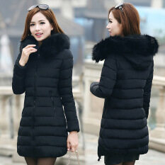 Women's Winter Jackets & Coats - Buy Women's Winter Jackets ...