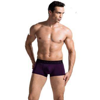 Harga 2 Pcs Arnaldo Bassini Men's Briefs Underwear Boxer (Purple)