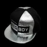 TEEMI Snapback Hip Hop Hats Adjustable Baseball Cap BIGBOY - Metallic Silver