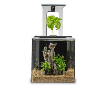Harga EcoQubeC Aquarium - Desktop Betta Fish Tank For Living Office AndHome Decor