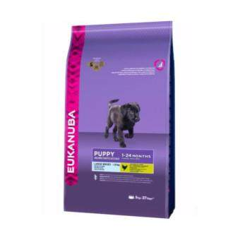 Eukanuba Puppy Large Breed 15kg