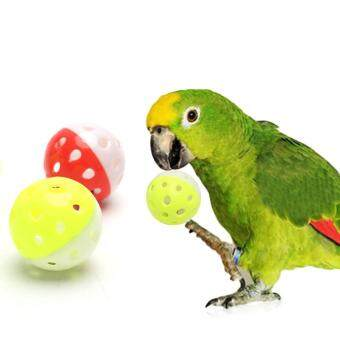 Harga Gracefulvara Pet Parrot Toy Bird Hollow Bell Ball For ParakeetCockatiel Chew Cage Fun Toys