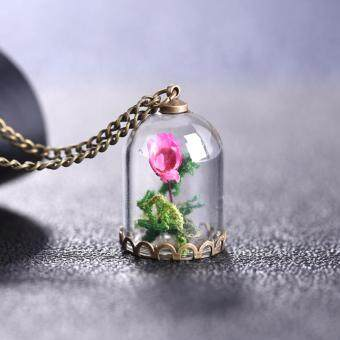 "Hequ Perfect Gift for Women ""Beauty and the Beast\"" Romantic DriedFlowers Glass Bronze Long Chain Necklace(... One Size)"