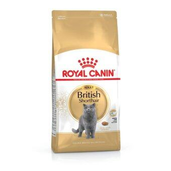 Harga Royal Canin British Shorthair Adult 10KG