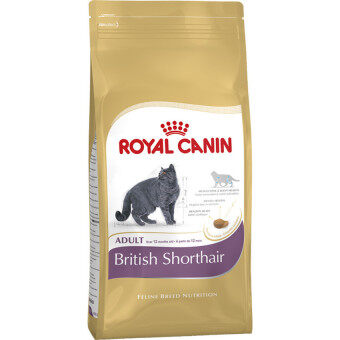Harga Royal Canin British Shorthair Adult 4Kg