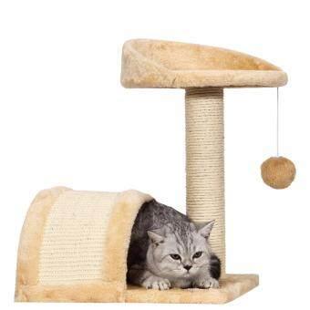 where are feral cats found in australia