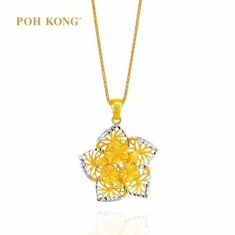 POH KONG Anggun Bunga Raya 916/22k Yellow Gold Jewellery Gift For Women - Gold Pendant, Loket Emas
