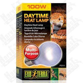 Harga PT2111 Exo Terra Day Time Heat Lamp (A19) - 100W