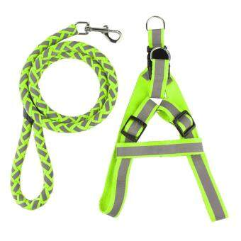 Harga Retractable Pet Dog Fluorescen Training Leash Set 30-50cm (Green)