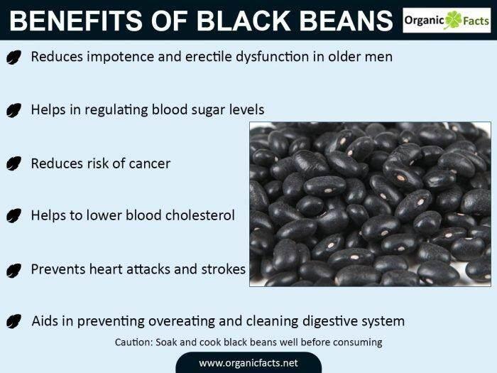 [Best Deal] MH FOOD Organic Black Bean Powder 300g (6 Packs)