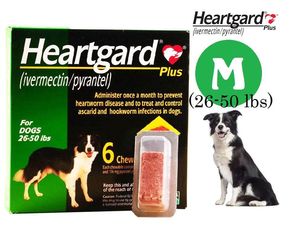 Heartgard Plus Chewables for Medium Dog 26-50 lbs - 6 Tablet ( Green )