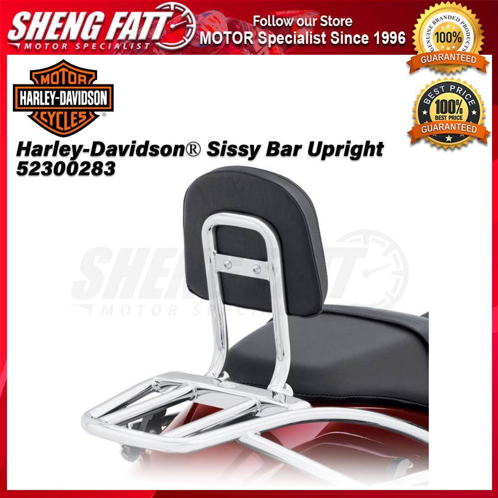 Harley-Davidson® Street™ Family Sissy Bar Upright 52300283 Chrome