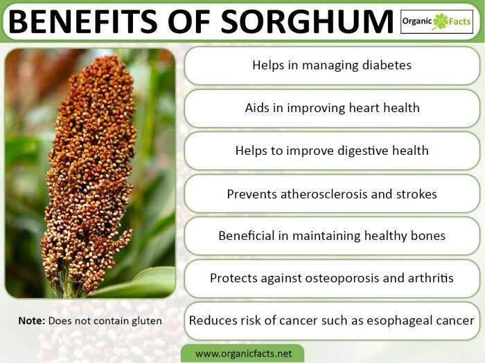 [Best Deal] MH FOOD Organic Sorghum Rice, Gluten Free, 500g (6 Packs)