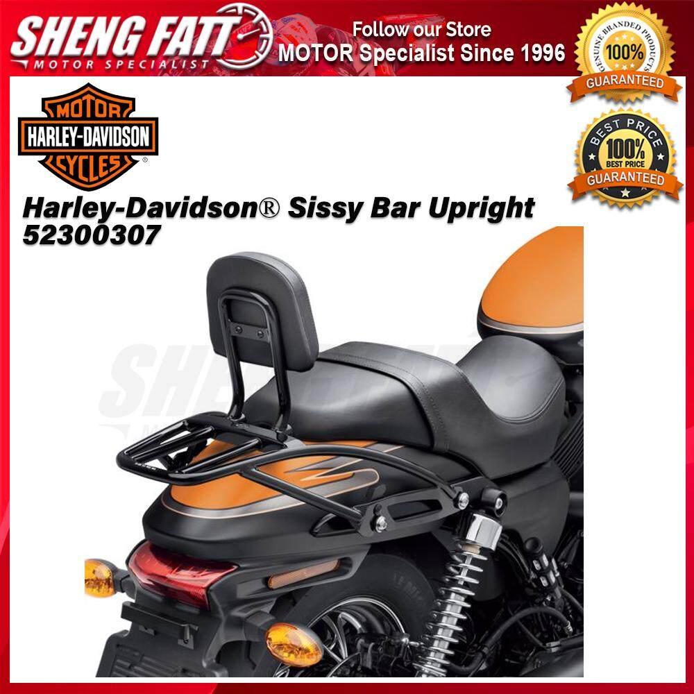 Harley-Davidson® Street™ Family Sissy Bar Upright 52300307