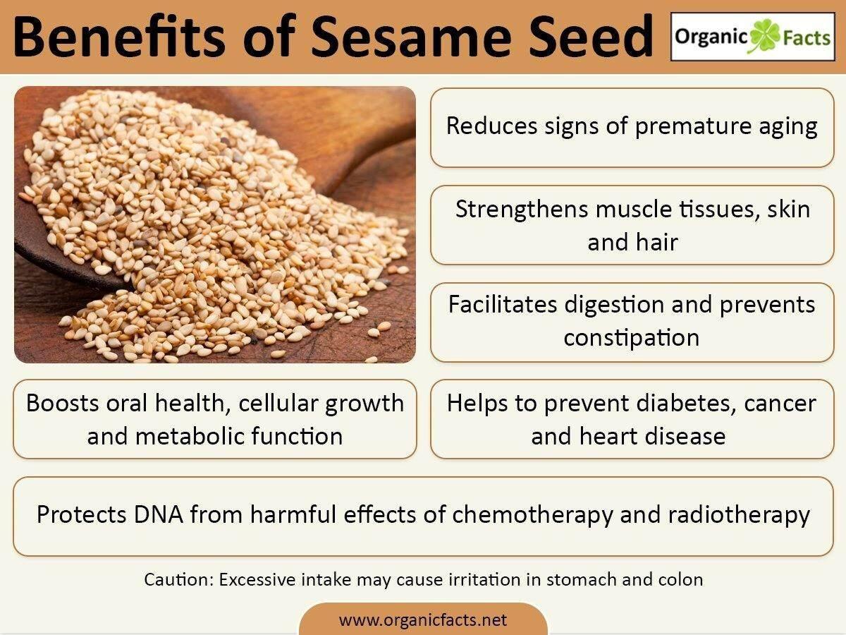 [Best Deal] MH FOOD Walnut Sesame Superfood Complete Nutrition Powder 300g (6 Packs)
