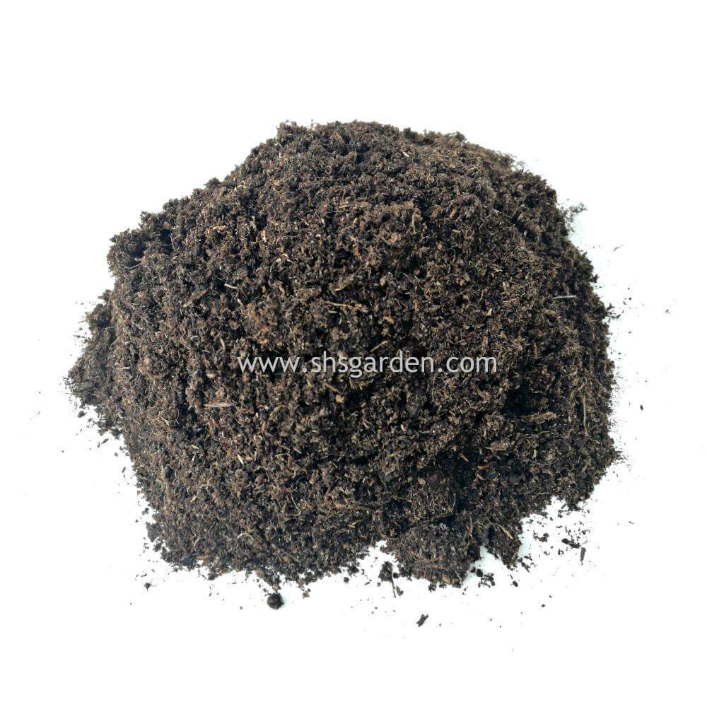 Imported Peat Moss (3 kg)