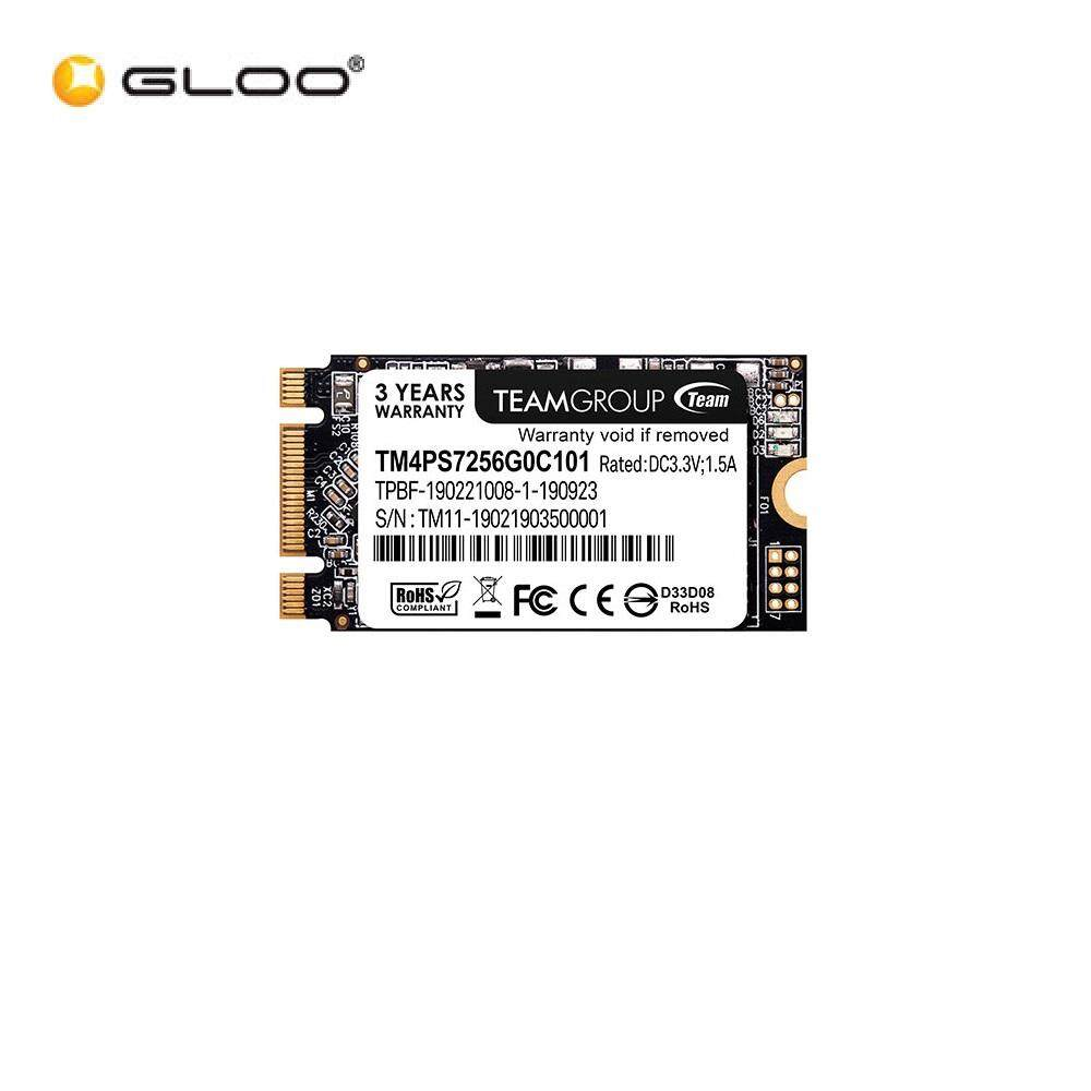 Team M.2 2280 (MS30) SSD - 256GB (TM8PS7256G0C101)