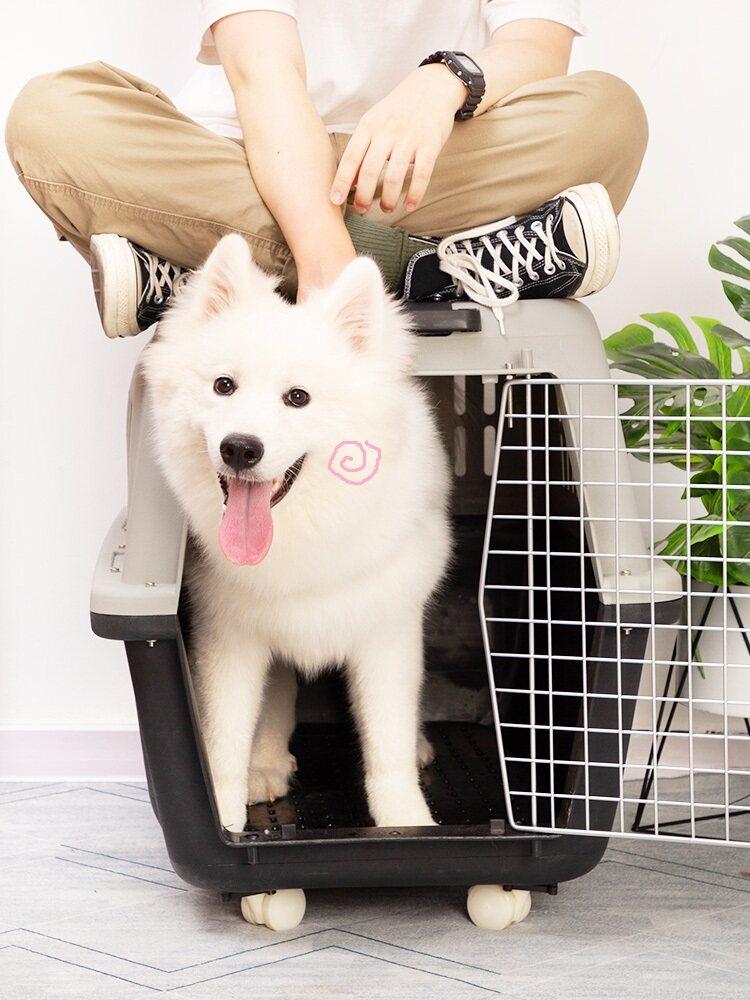 Jual Kotak Udara Portabel Kucing Peliharaan Kandang Anjing Berkembang Biak Besar Di Atas Kapal Anak Anjing Kecil Cek Udara Hari Ini