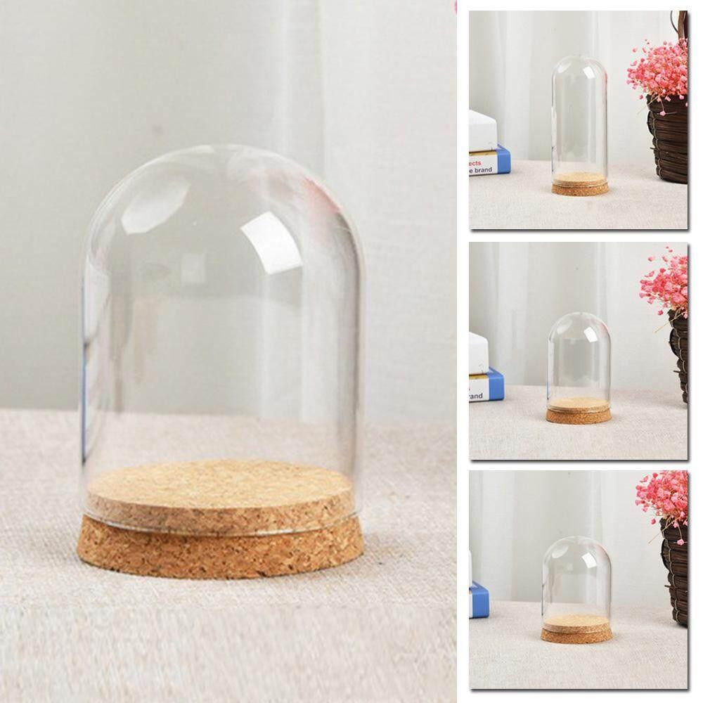 8x8cm Desktop Cloche Jar Glass Dome Cover Succulent Terrariums w//Wood Cork